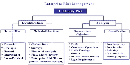 thesis on enterprise risk management