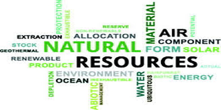 Environmental Resource Management Assignment Point