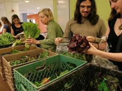 About Community Supported Agriculture