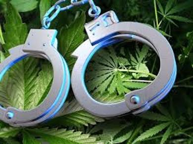 Penalties for Marijuana
