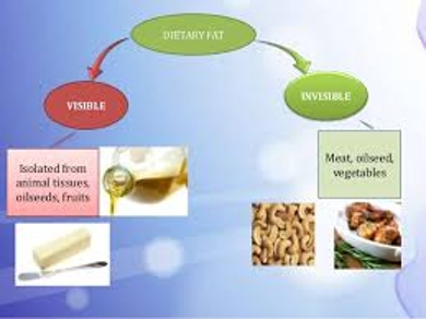 Oilseed Fats