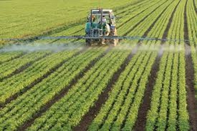 About Organic Agriculture