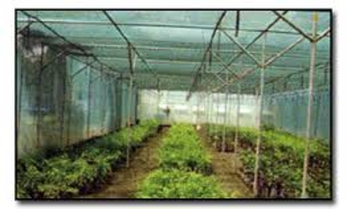 Use of Agronet