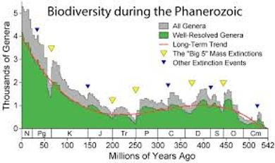 About Biodiversity