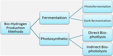 Biohydrogen Definition