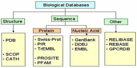 Biological Database Assignment Point