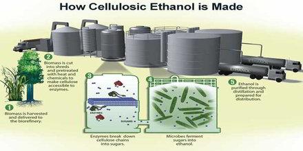 Cellulosic Ethanol
