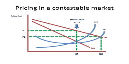 Contestable Market