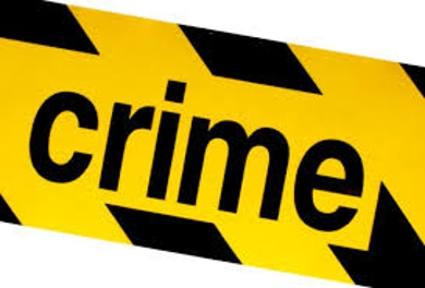 History of Crime