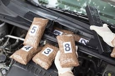 Role of the Drug Trafficking Attorney