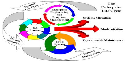 Enterprise Life Cycle
