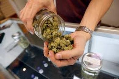 Marijuana Crimes