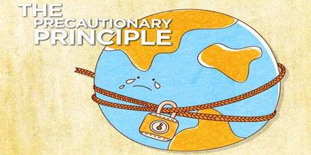 Precautionary Principle Analysis