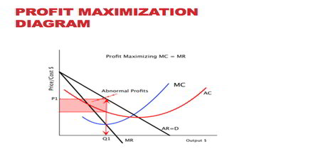 Profit Maximization Process