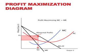 Profit Maximization Process