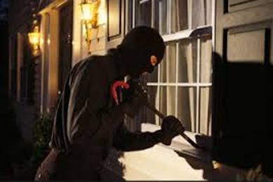 Property Crimes