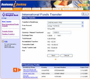 Basics of International Bank Transfers