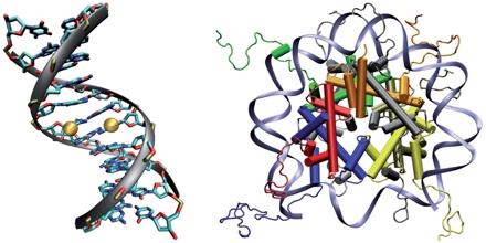 Computational Epigenetics