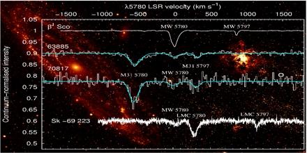 Diffuse Interstellar Bands