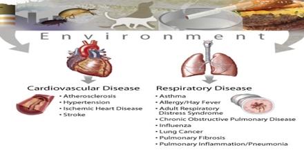 Environmental Disease