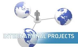 Format of International Tenders