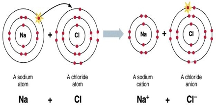 Covalent bond research paper