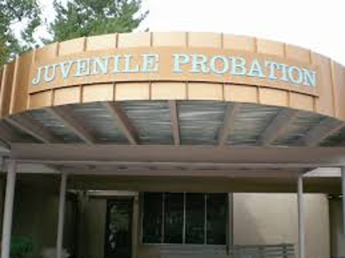 briefly discuss the history and evolution of the juvenile justice system History of juvenile justice  passage of the juvenile court act establishing the first official comprehensive system of juvenile justice this gave the momentum to .