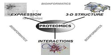 Proteomics Definition