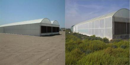 Seawater Greenhouse