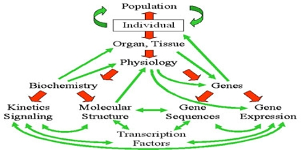 Complex Systems Biology