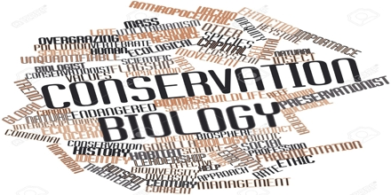 conservation biology research papers View conservation biology of plants research papers on academiaedu for free.