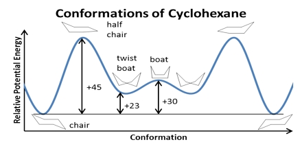 Cyclohexane Conformation