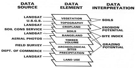 Data Element