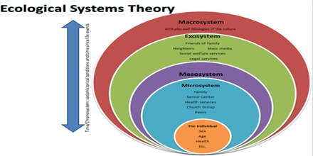 Ecological Systems Theory Assignment Point
