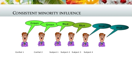 Minority Influence Assignment Point