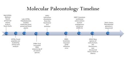 Molecular Paleontology