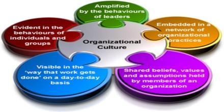 evaluating ges organizational culture essay