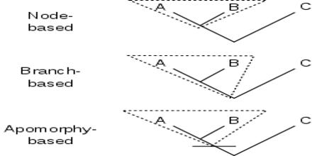 Phylogenetic Nomenclature