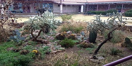 Reconciliation Ecology