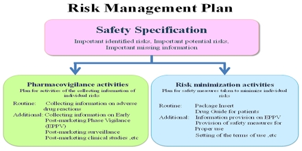 Risk Management Plan Assignment Point – Risk Management Plan