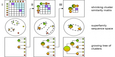 Sequence Clustering