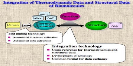 Thermodynamic Databases for Pure Substances