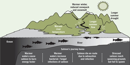 Fisheries and Climate Change