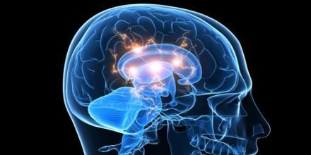 Behavioral Neurology
