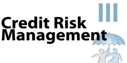dissertation report on risk management in banks Reporting and managing risk • risk management is no longer solely a financial discipline this report summarises case studies on risk management.