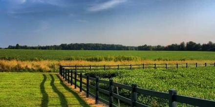 Ecological Farming