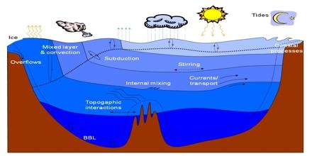 Modular Ocean Model