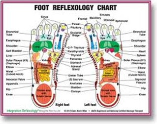 About Reflexology
