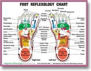 About Reflexology