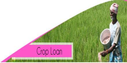 Rural People Crop Loans of Bangladesh Krishi Bank